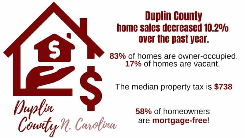 Owning or Renting Property in Duplin County